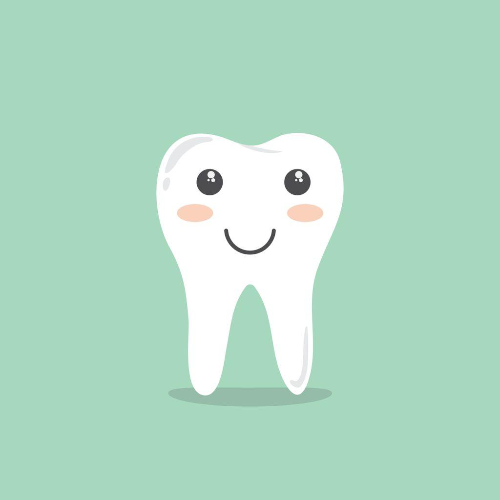 teeth, cartoon, hygiene